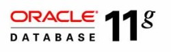 oracle_11g_database